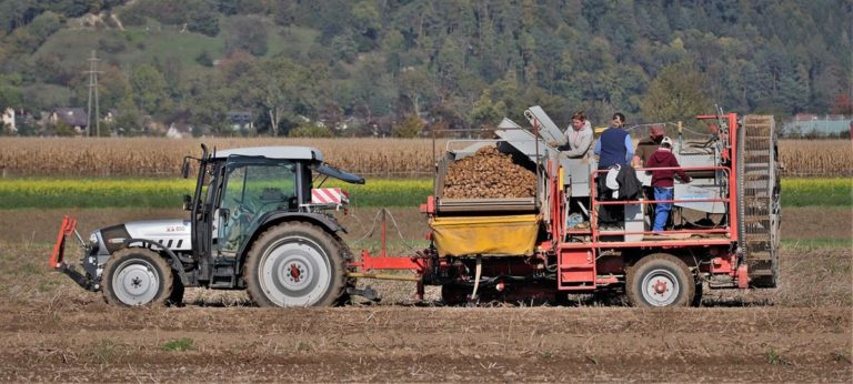 Ciągniki znacznie ułatwiają pracę w rolnictwie